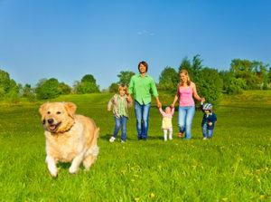 CADIRI Cursus hond in het gezin