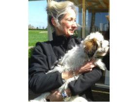 Tibetaanse Terrier puppies en bijten