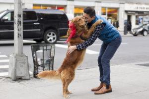 CADIRI Blafjournaal Hondenknuffel