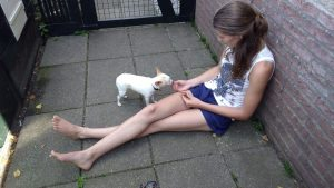 Lois met Vanilla de Chihuahua